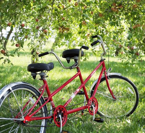 tandem-fietstocht-delden